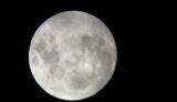 月の写真を撮りました。